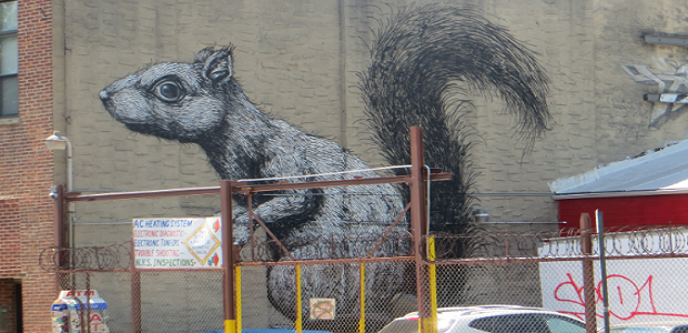 Who would know that a casual walk through Brooklyn would result in a run in with a ROA? Now what exactly is a ROA you ask? Well ROA is a […]