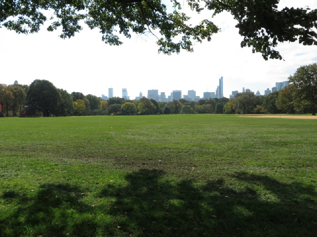 Central Park NYC - Great Lawn