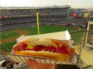 Yankees Stadium hotdog
