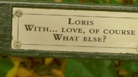 Walking through Central Park, there's so much to see that you just might not notice that some of the Central Park Benches have plaques with personal messages professing undying love, […]